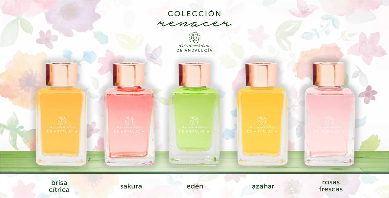 los-aromas-más-especiales-de-la-primavera
